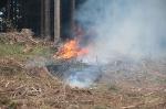 Waldbrandübung Kömmel_197