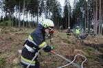 Waldbrandübung Kömmel_198
